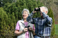birding in the Wetlands in the Mugla province